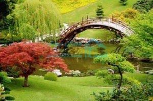 باغ گیاه شناسی منطقه22